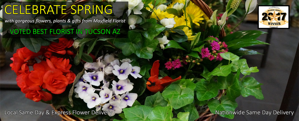 Spring Flowers, Flowering Baskets