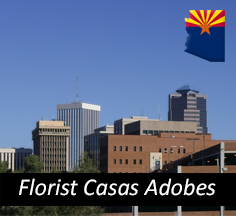 Florist Casas Adobes AZ, Flower Shop Casas Adobes